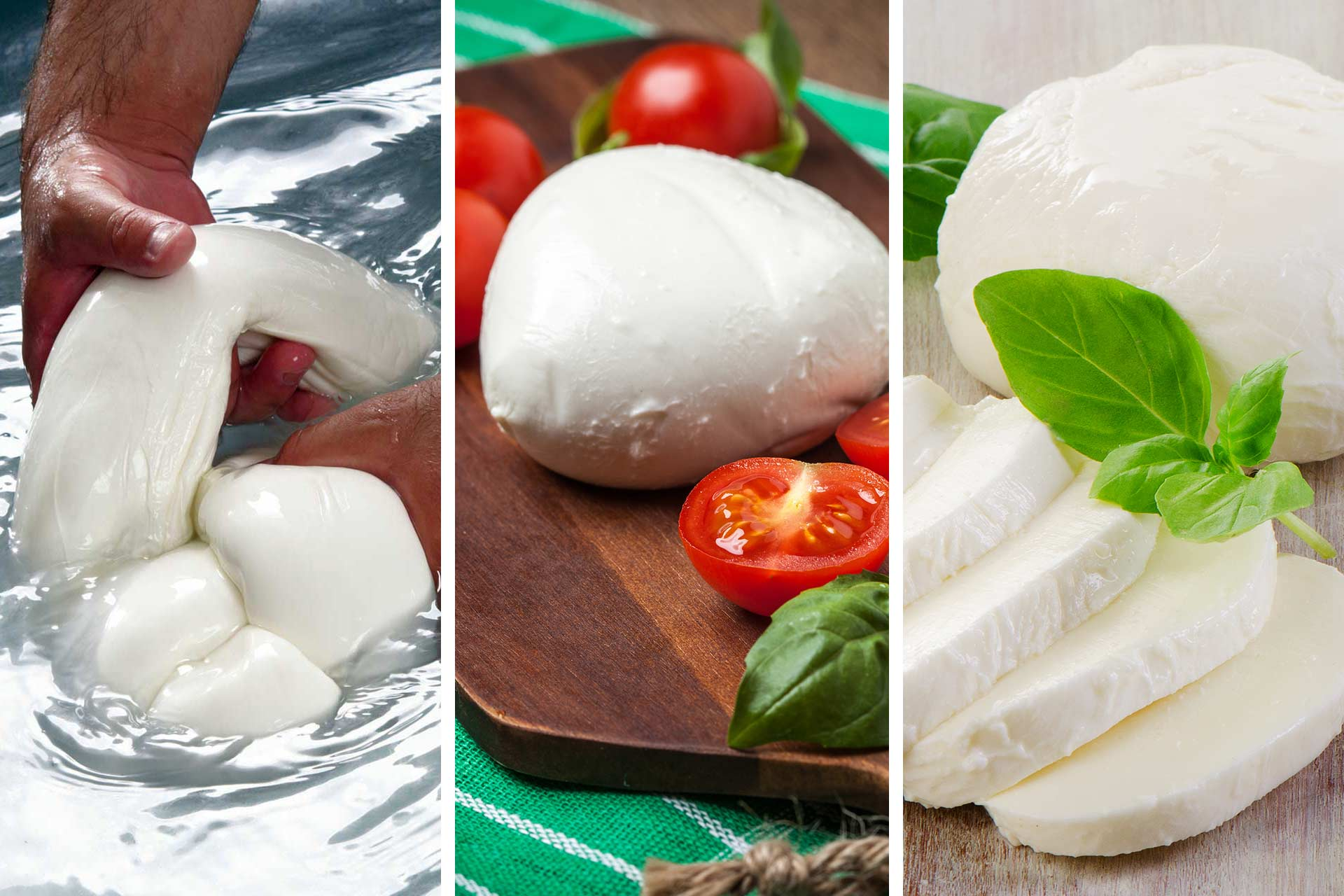 Mozzarella Collage